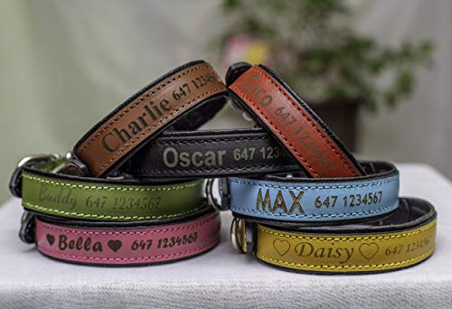 Lino – Personalized Dog Collar – Genuine Leather Dog Collar for Small, Medium, Large Dogs and Puppy – Laser Engraved…