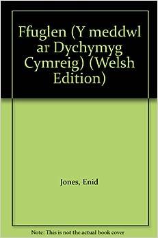 FfugLen: Y Ddelwedd o Gymru yn y Nofel Gymraeg o Ddechrau'r Chwedegau hyd at 1990 (Y meddwl ar Dychymyg Cymreig)