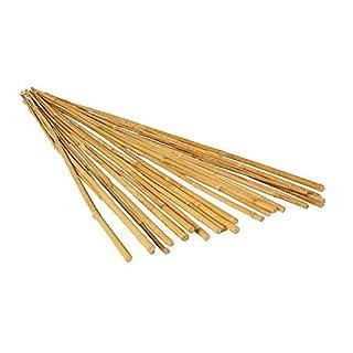 Hydrofarm HGBB4 4' Natural, Pack of 25 Bamboo Stake, 4 foot, Tan