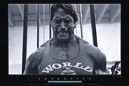 Pumping Iron Poster C 24x36 Arnold Schwarzenegger Lou Ferrigno Roger Callard