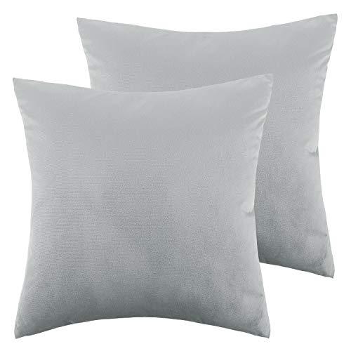 Lewondr Velvet Soft Throw Pillow Cover, 2 Pack