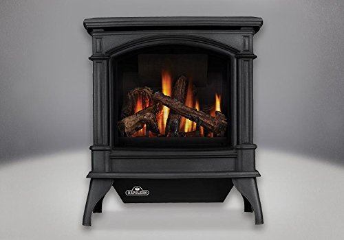 Most Popular Fireplaces Gas Stoves