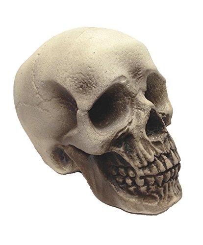 Realistic Foam Skull Prop (Foam Skull)