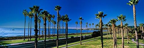 Posterazzi PPI164952 Palm trees near the beach Santa Barbara California USA Poster Print 6 x 18 (Best Beaches Near Santa Barbara)