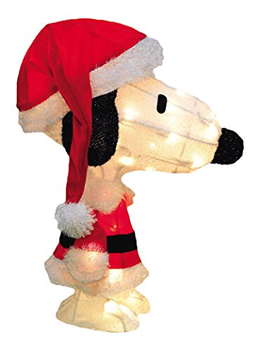 Peanuts Christmas Lights Outdoor