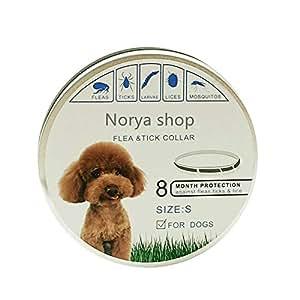 BESTHINKY Collar para pulgas y garrapatas, Repelente de Insectos Seguro con aceites Esenciales Naturales Elimine