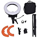 "Photo : Safstar 12"" LED Ring Light Flash Video Light 35W 5600K Dimmable with Stand, Plastic Color Filter Set, Carrying Case for Smartphone, Youtube, Vine Self-Portrait Video Shooting"