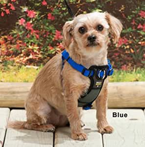 Walk Right Padded Front Harness Small Color: Black