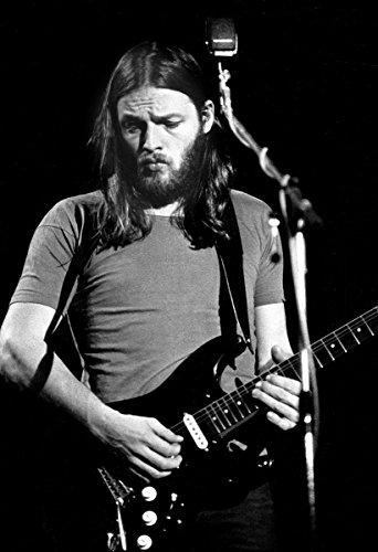David Gilmour Poster Quality Print