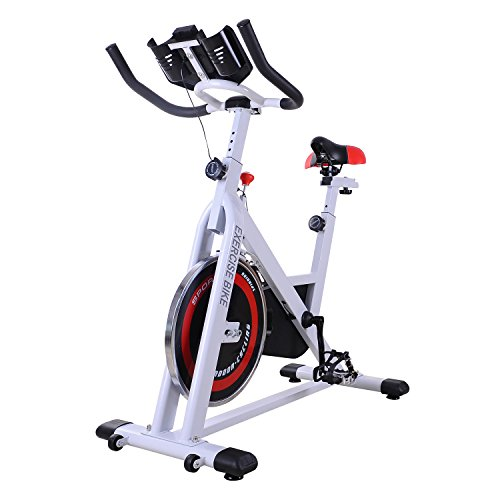 🥇 HOMCOM Bicicleta Estática Bicicleta de Fitness Pantalla LCD Asiento y Manillar Ajustable Resistencia Regulable Carga 120kg 107x48x100cm Acero Blanco