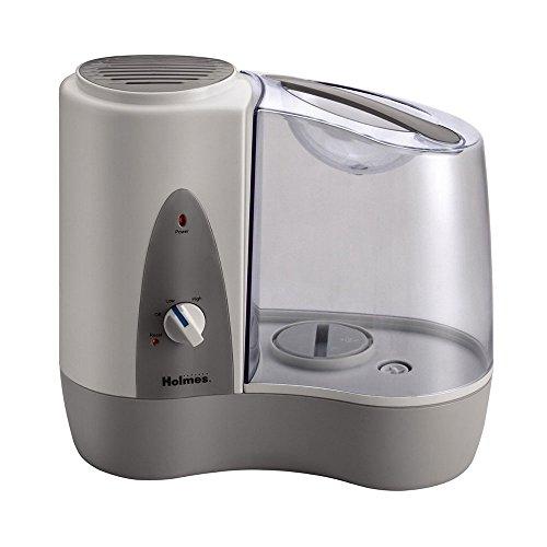 (Holmes Warm Mist Filter Free Single room Humidifier w/Auto Shut Off)