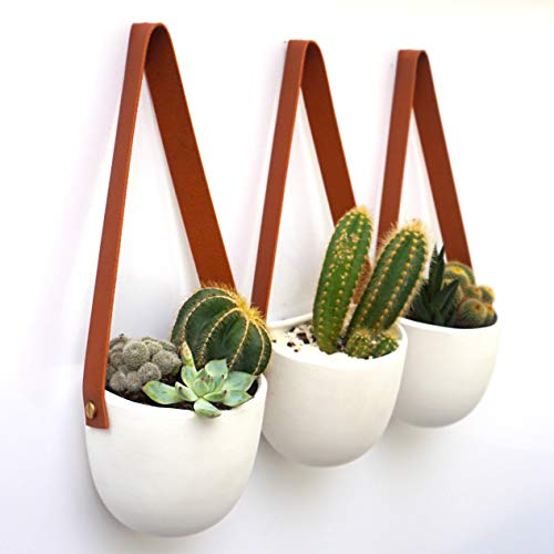 Kimisty Set 3 Hanging Succulent Wall Planters Pot | White Ceramic Planter with Faux Leather Strap | Decor as Cactus, Succulents, Baby Plants, Flower Pots, Vase, Container | Window & Herb Planter with (Wall Planter Design)