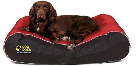 Dog Doza Active Style Waterproof Dog Beds for Large Breed