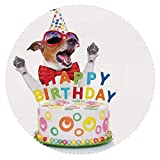 iPrint Upscale Round Tablecloth [ Birthday Decorations for Kids,Party Dog at Suprise Birthday Party with Cone Hat and Glasses,Multicolor ] Fabric Home Tablecloth Ideas
