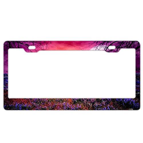 Full Moon Fantasy Natural License Plate Holder - Stainless Steel Metal License Plate Frame For Women,License Plate Frames Humor