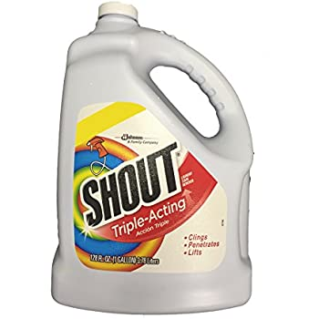 Amazon Com Shout Laundry Stain Remover Trigger Spray 22
