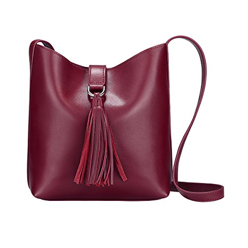 (S-ZONE Women's Small Cowhide Leather Shoulder Bag Chic Cross-body Bag Tassel Ladies Purse (Burgundy))