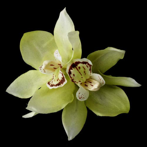 Green Spring Orchid Summer Flower Bridal Hair Clip by gingsengparty (Image #1)