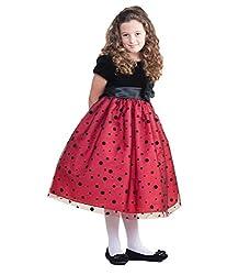 AkiDress Polka Dot Velvet and Tulle Dress For Big Girl & Flower Girl White 2-10