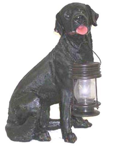 Black Labrador Dog with Lantern Solar Light ()