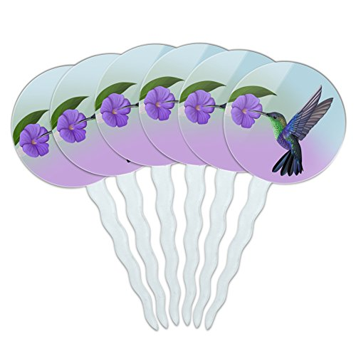 GRAPHICS & MORE Hummingbird Crowned Woodnymph Purple Violet Cupcake Picks Toppers Decoration Set of 6