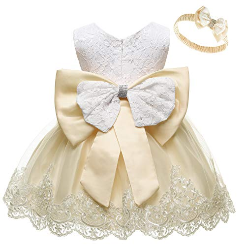 Holiday Champagne - Baby Girl Sleeveless Lace 3D Flower Tutu Holiday Princess Dresses Champagne