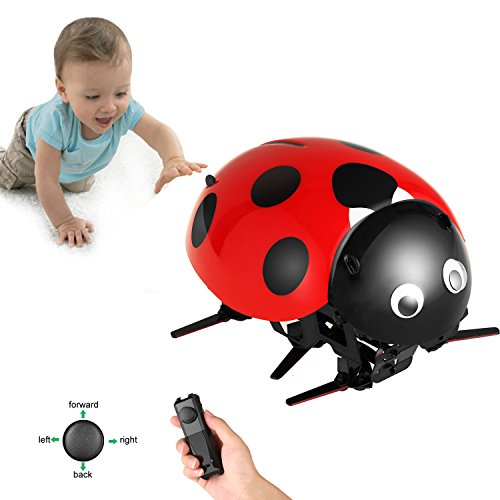 Arshiner Intelligent RC Ladybug Robot Toy,DIY Radio Control Electric Insect Toy Model with 2.4GHz wireless remote Control Technology&Rechargable Battery, for Kids Age (Bug Robot)
