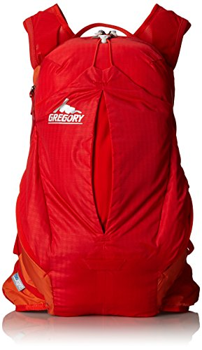 Gregory Miwok Daypack - 7