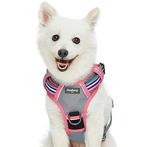 Blueberry Pet Soft & Comfy 3M Reflective Multi-Colored Stripe Mesh Padded No Pull Dog Harness Vest with Front/Back Leash Clips, Medium, Pink, Emerald & Orchid