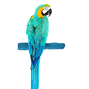 Sweet Feet and Beak Comfort Grip Safety Perch for Birds Patented Perch Keeps Nails and Beak in Top Condition - Safe and Non-Toxic, for Cages - Large/Blue 55