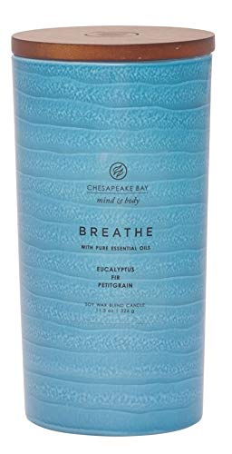 Chesapeake Bay Candle Mind & Body Serenity Scented Candle, Breathe with Pure Essential Oils (Eucalyptus, Fir, Petitgrain), Large