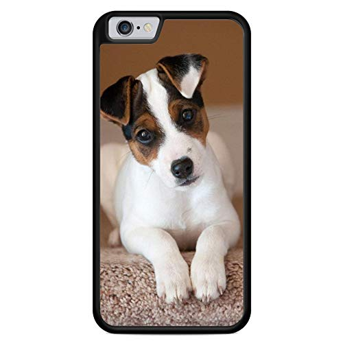 (for Apple iPhone 5C Case Jack Russell Terrier Dog Pup Puppy Phone Skin Case)