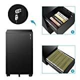 DEVAISE 2-Drawer Mobile File Cabinet with
