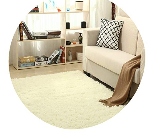 Super Soft Silk Wool Rug Indoor Modern Shag