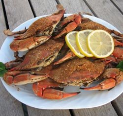 1 Dozen Large Blue Crabs