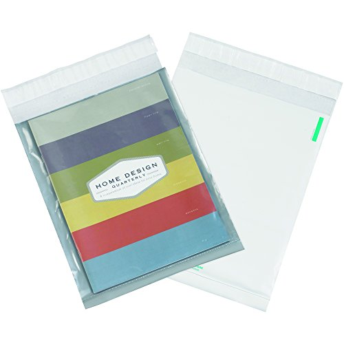 Clear View Poly Mailers - BOX USA BCV912100PK Clear View Poly Mailers, 9