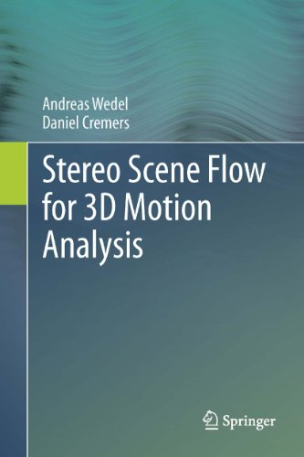 Download Stereo Scene Flow for 3D Motion Analysis Pdf