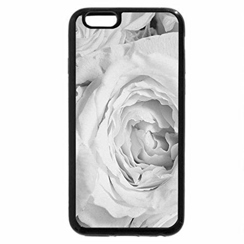 iPhone 6S Plus Case, iPhone 6 Plus Case (Black & White) - Beautiful rose