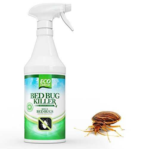 Cruise Bed Bugs Killer