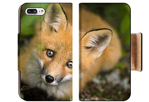 Luxlady Premium Apple iPhone 8 Plus Flip Pu Wallet Case Wild red Fox from National Park Jacques Cartier Quebec Canada Image ID 5132648