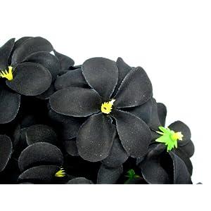 "(12) Black Hawaiian Plumeria Frangipani Silk Flower Heads - 3"" - Artificial Flowers Head Fabric Floral Supplies Wholesale Lot for Wedding Flowers Accessories Make Bridal Hair Clips Headbands Dress 85"