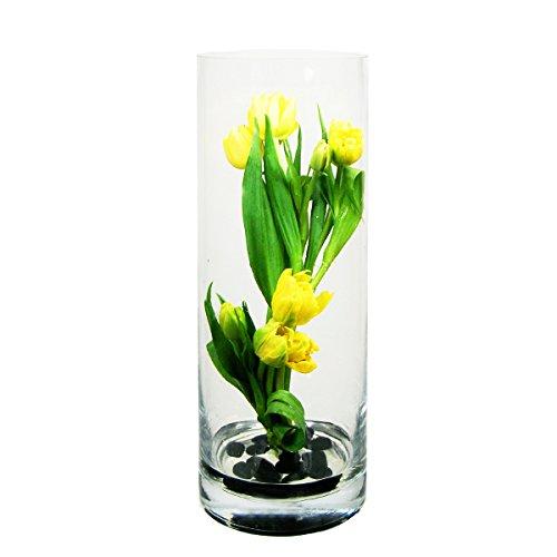CYS EXCEL Glass Vase, Cylinder Vase, Glass Cylinder Vases Set, 5 Size Available, (Pack of 4) (H:12