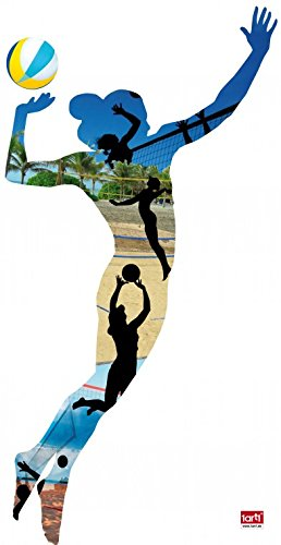 Volleyball Silhouette - 1
