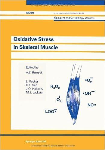 Oxidative Stress In Skeletal Muscle por Reznick epub