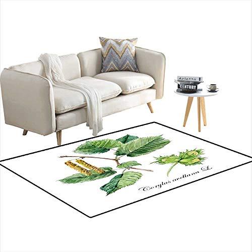 - Room Home Bedroom Carpet Floor Mat Hazel Hazelnut Filbert Collection herb 48