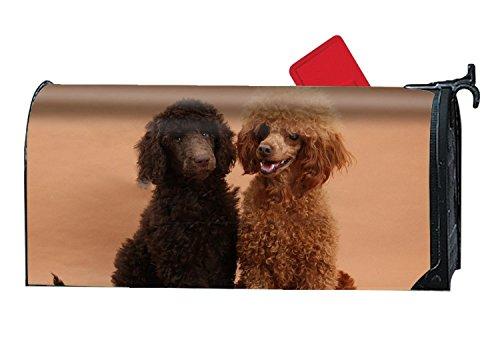 jiajufushi Personalized Mailbox Makeover Toy Poodles Mailbox