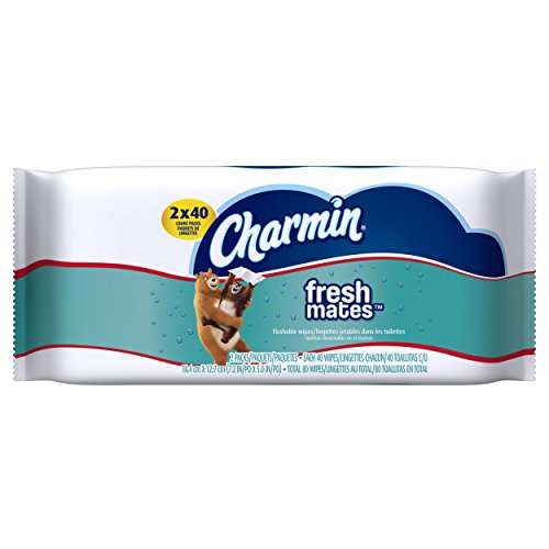 Charmin Freshmates 80 Count Refill Pack (2 Packs of 40 Count Fresh Wipes)