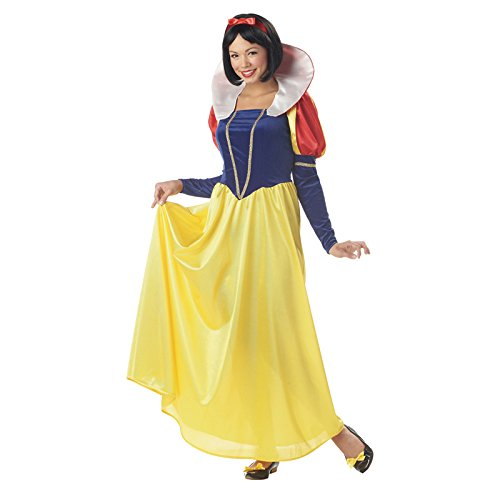 California Costumes Women's Snow White,Blue/Yellow, Small (Fairy Princess Costumes Adult)