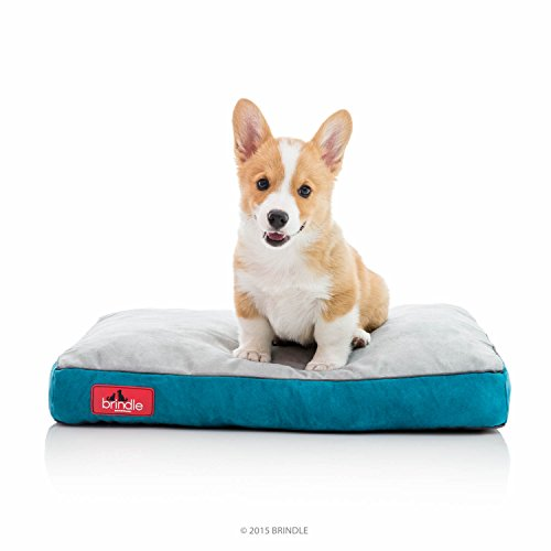 Brindle Soft Shredded Memory Foam Dog Bed with Removable Washable Cover - 22in x 16in - Teal ()