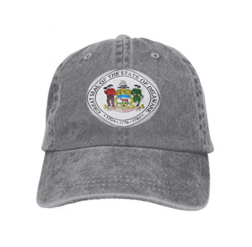 Unisex Flat Bill Hip Hop Cap Baseball Hat Head-Wear Cotton Trucker Hats State Seal Delaware USA d rendegray Gray